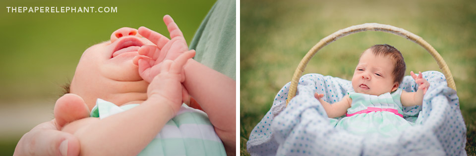 Newborn Easter Portraits in Basket by Tegan Jae